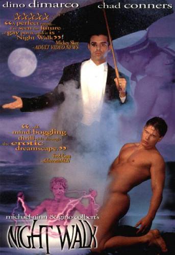Night Walk: A Bedtime Story (1995)