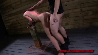 BDSM Doggystyle – Ava Kelly