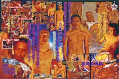 Wild Rove — Asian Gay, Hardcore, Handjob, Toy, HD