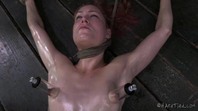 Calico – BDSM, Humiliation, Torture HD-1280p