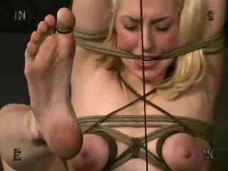 Insex – Clerical