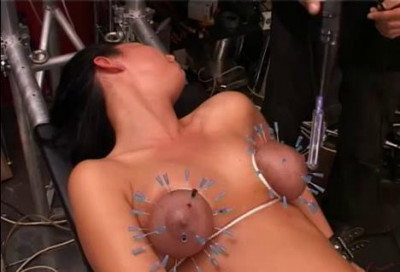 Electrical Stimulation Of The Breast Pierced With Needles And Related (2014)