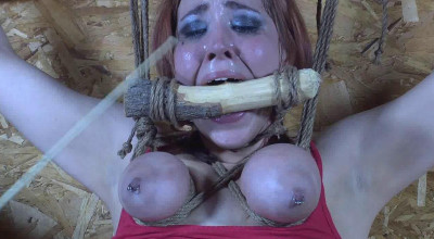 Barnyard Captive Riley Jane Spreadagle To the Wall 1