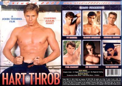 Studio 2000 – Hart Throb (1993)