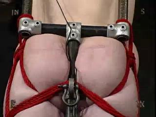 Vip Full Collection Insex 2004 - 37 clips!