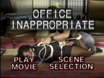 Office Inappropriate (2009 – DVDRip)
