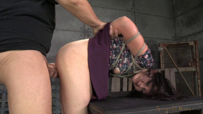 Amy Faye Bound and Fucked