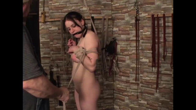 Reluctant Bondage Model Part Two