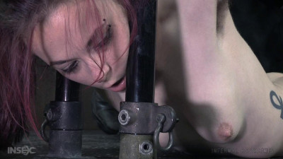 Infernalrestraints - Jan 08, 2016 - Pit Pull - Ivy Addams