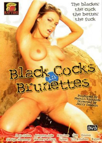 Black cocks in brunettes