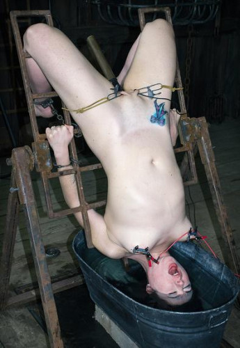 The BDSM Farm Part 2 Tortured Sole