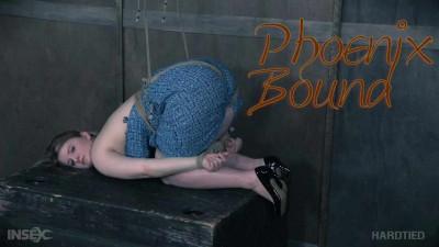Phoenix Bound