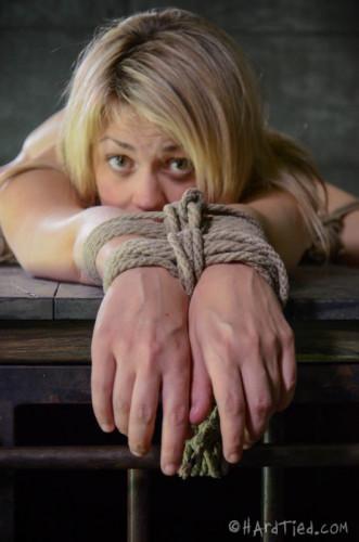 HT - Blonde Winnie Rider, Jack Hammer - Winnie the Whiner - Aug 20, 2014