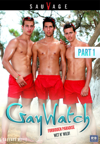 Gay Watch Part 1 (2011)