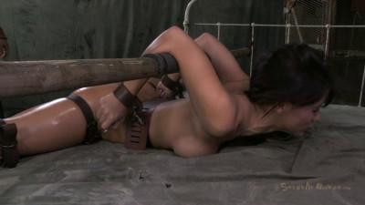 Sofia Delgados First Bondage Shoot Anywhere Full Splits Deep Throating Rough Pounding Sex