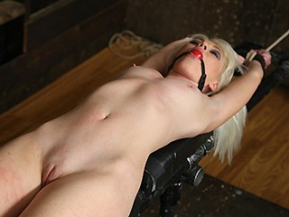 Society SM - 10 Dec, 2016 - Back in Blonde