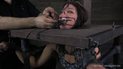Nose Hooks, A Spider Gag And A Tongue Clamp