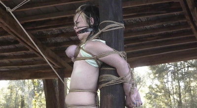 Outdoor Afternoon Agony For Lexi Lane – Part 3