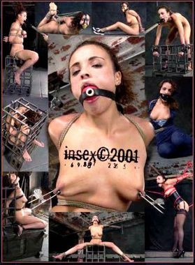 108 (Pd) Insex