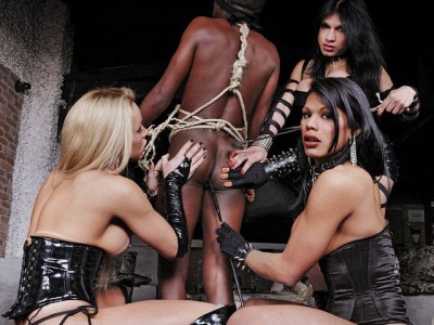 Three Wild Ts Mistresses Dominating