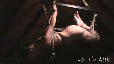 Intotheattic – 2010-02-04 – Elise