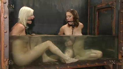 Insex – Tank Girls – 411, Angelica