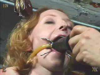 Exclusive Collection Insex – 40 Clips. 8.