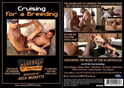 Cruising For A Breeding