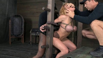 Darling Darling utterly destroyed by cock!