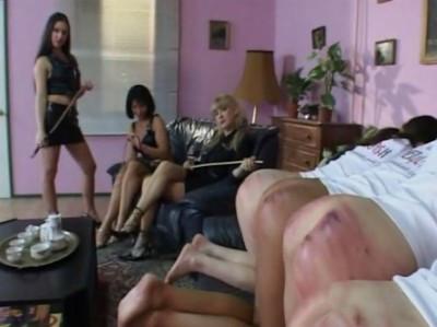 Caned4Cash - Budapest Girls