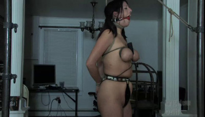 Meat Toys Part One  – Lavender Rayne