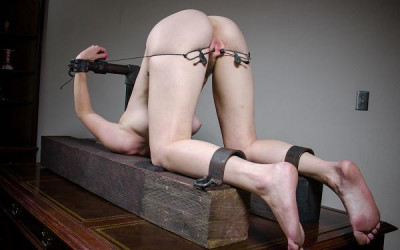 Young meat for BDSM