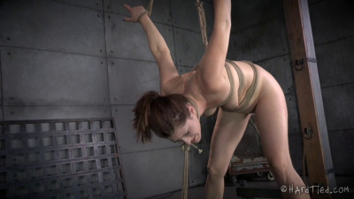 Sensation Slut - Cici Rhodes - Rain Degrey