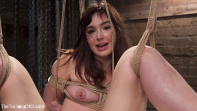 Jodi Taylor and the Slave Trainer