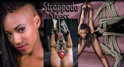 Hardtied - Nov 27, 2013 - Strappado Stress - Nikki Darling - Cyd Black