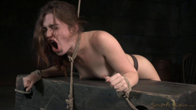 Lush brunette Jodi Taylor bent over, bound and used hard