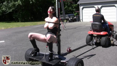 The BDSM Fantasy 3 (50 video)