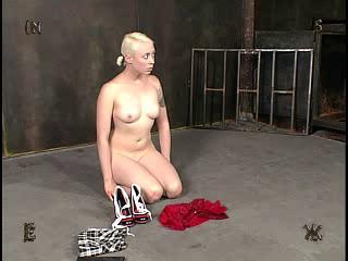 BDSM and Bondage 366