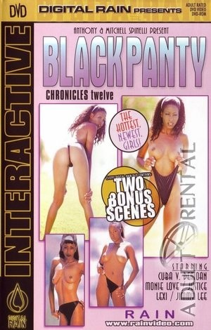 Black Panty Chronicles 12