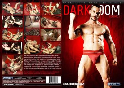 DarkRoom. Volume 3 (2013)