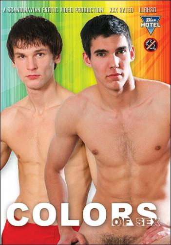 Description Colors of Sex (S.E.V.P)