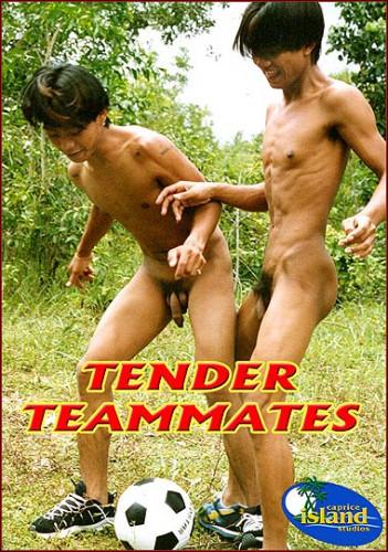 Description Tender Teammates