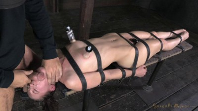 Fresh faced Bonnie Day conquered by cock and bondage (2014)
