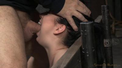 Bound & deepthroat
