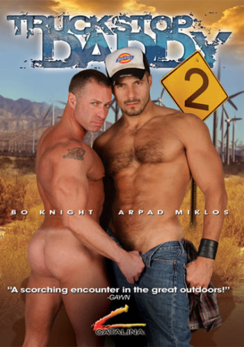 Description Truckstop D addy 2 - Arpad Miklos (2004)