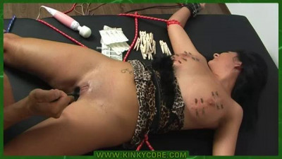 1Kinky Core BDSM Bondage, Humiliation, Torture Part Two 340-360, 401-420 (36 Video)