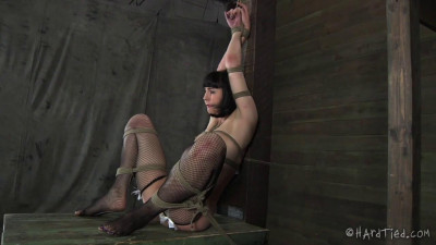 I Chose The Roughest Ropes And Tightest Ties To Put Her In Her Place Fast