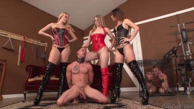 Vanessa Cage Alexa Rydell Riley Rey Make You Goddess Cum with 3 Mistresses (2015)