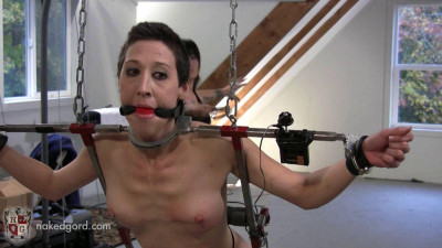 The BDSM Fantasy 4  (48 Video)