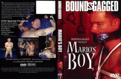 Mario's Boy